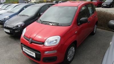 Fiat Panda 1,2 69 Easy bei Autohaus Leibetseder GmbH in Ihre Fahrzeugfamilie