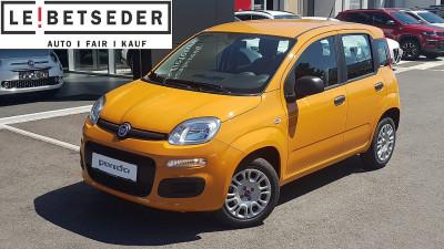 Fiat Panda 1,2 70 Easy bei HWS || Autohaus Leibetseder GmbH in