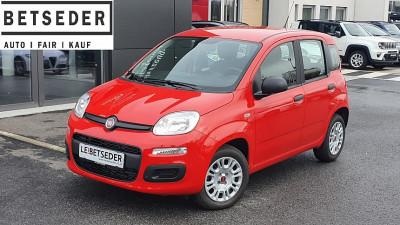 Fiat Panda 1,2 69 Easy bei HWS || Autohaus Leibetseder GmbH in