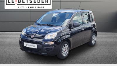Fiat Panda 4×2 FireFly Hybrid 70 Panda bei HWS || Autohaus Leibetseder GmbH in